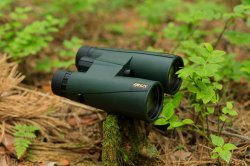 Binoculars DELTA OPTICAL Forest II 10x50